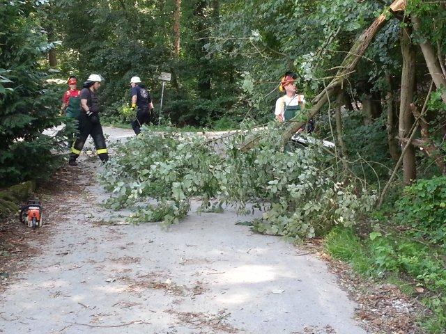Hilfeleistung vom 11.08.2013  |  (C) Feuerwehr Muehlhausen (2013)