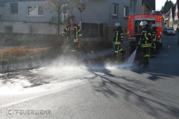 Hilfeleistung vom 20.03.2011  |  (C) Feuerwehr Muehlhausen (2011)